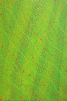 rainforest remembered semi abstract painting original patterns part 1